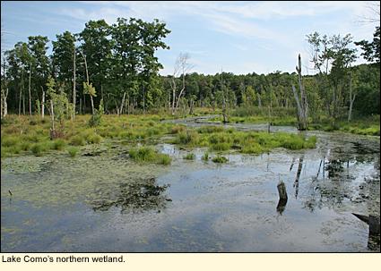 finger lakes new york lake como tourism travel and