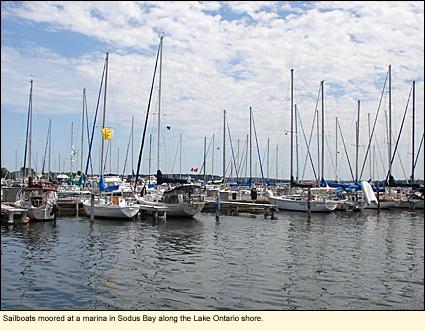 Sailboats Moored At A Marina In Sodus Bay Along The Lake Ontario S Finger
