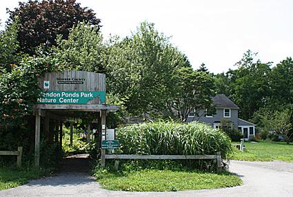 Clover Garden Center Rochester Ny Garden Ftempo