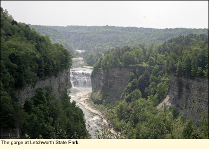 The gorge at Letchworth State Park.