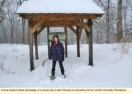 Finger Lakes New York Recreation Cross Country Skiing